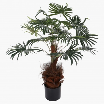 Decorative Palm Tree with Pot