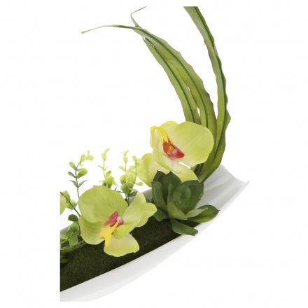 Green Orchid Flower with Pot 26 cms