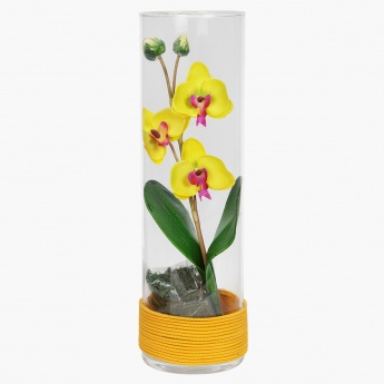 Orchid Flowers in Glass 30 cms