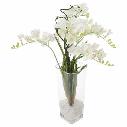 Freesia in Glass Vase 70 cms