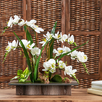 Decorative Orchids with Pot