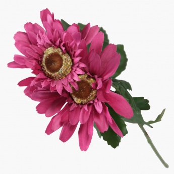 Gerbera Spray 75 cms