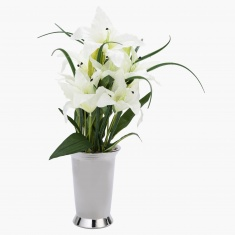 Lily Arrangement with Pot