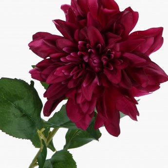 Single Dahlia Spray