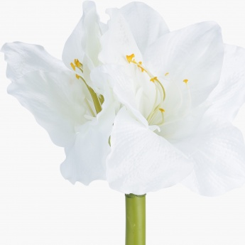 Amaryllis Spray
