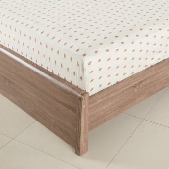 Mahogany Printed Queen Fitted Sheet - 155x205 cms