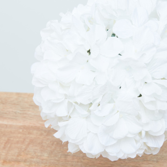 Hydrangea Flower Detail Ball